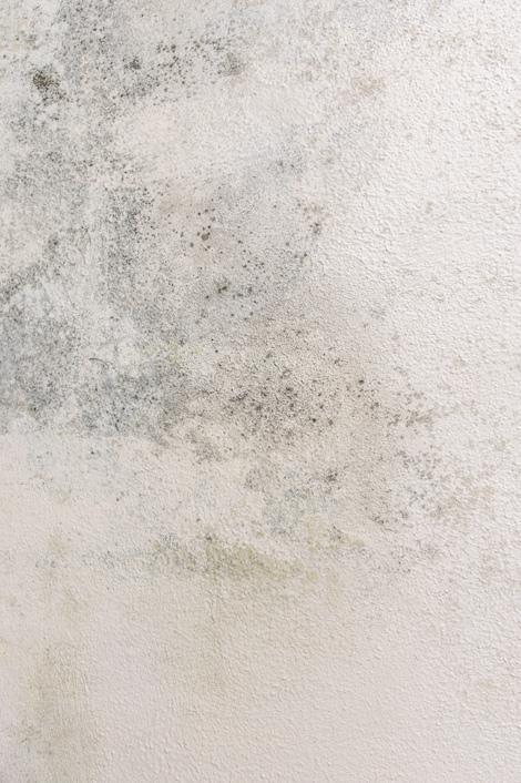 humidite-degradation-salle-bain